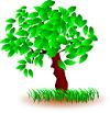 tree-161941_640